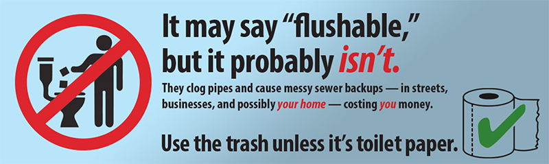 WW Do Not Flush - Flyer Image